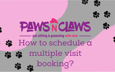 How to schedule a multiple visit booking?