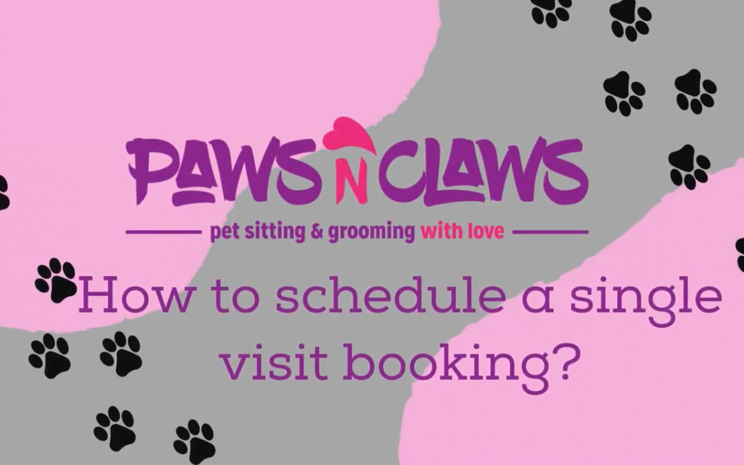 How to schedule a single visit booking?